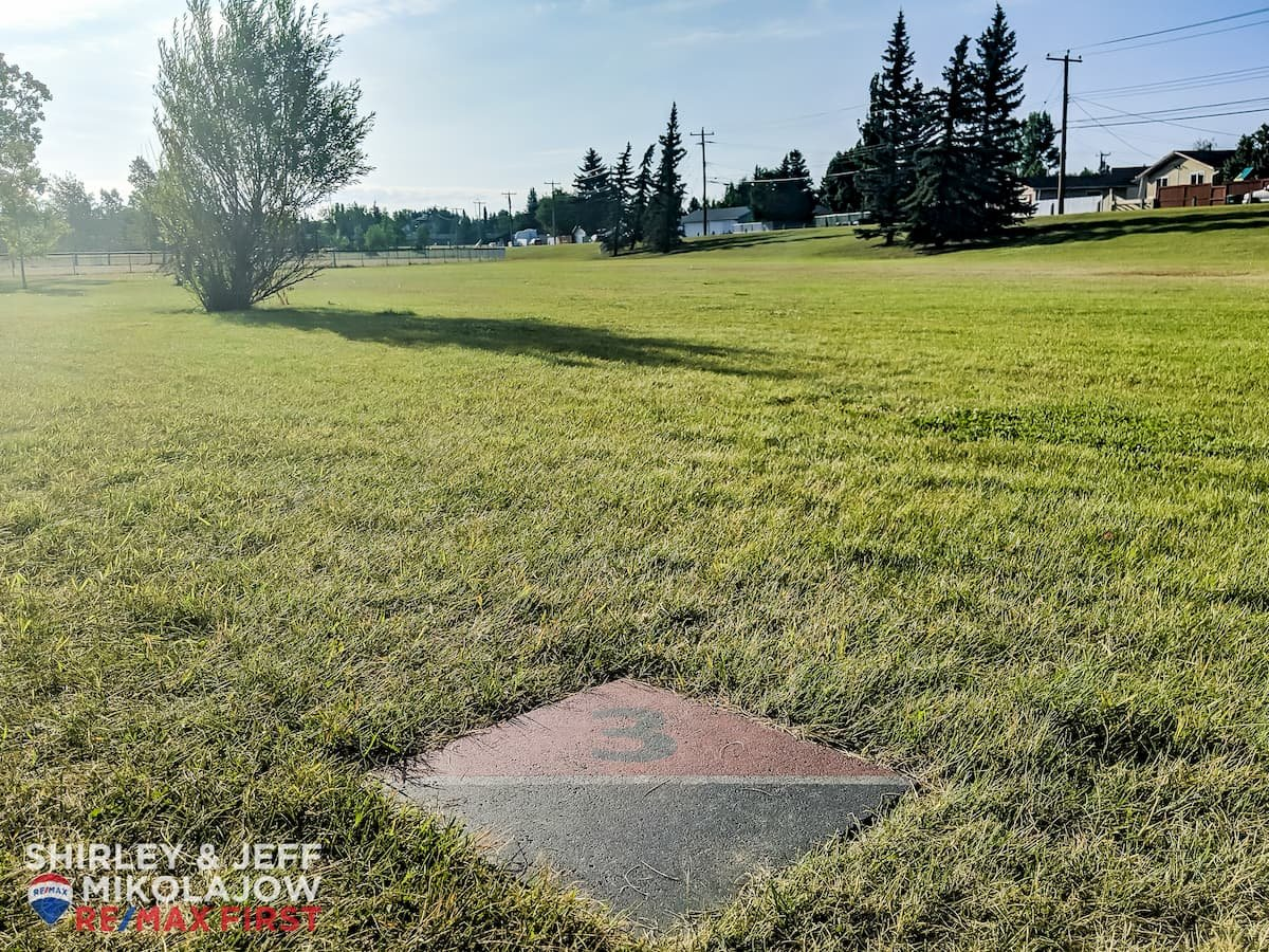 Bonavista Downs Community Disc Golf Course Basket Grass Run
