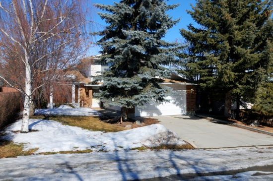 Calgary Braeside Estates MLS® REALTOR® listings for sale